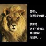 獅子與瘋狗
